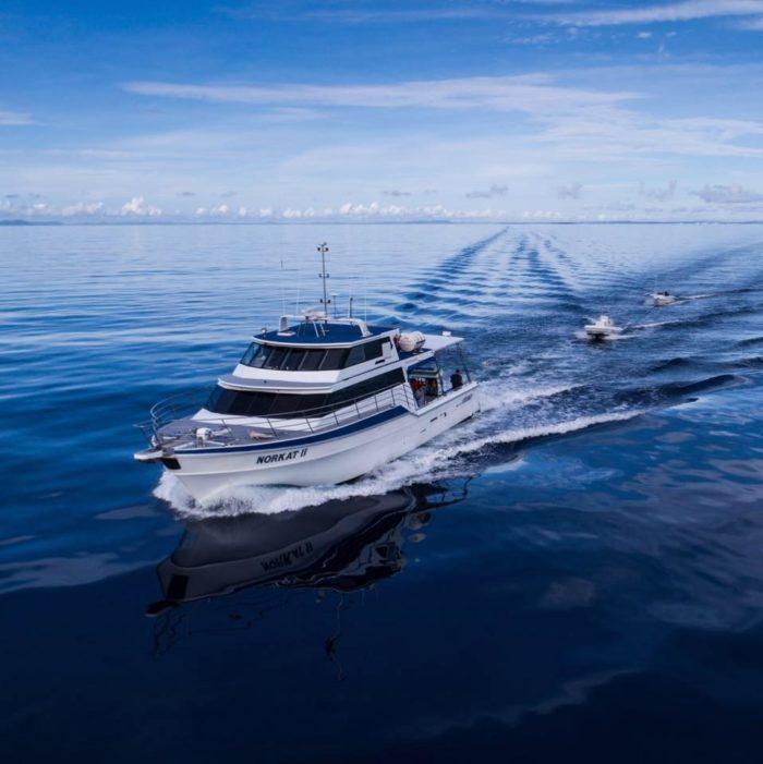 Spearfishing Liveaboard Charter Reeldeep