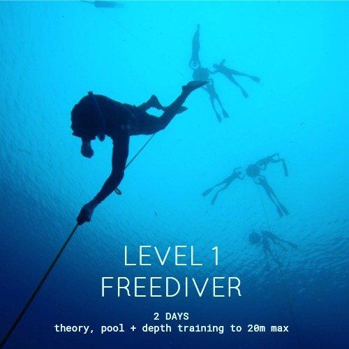 Beginner Freediving Course Level 1 Great Barrier Reef Cairns Australia