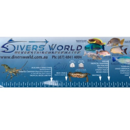 QLD Fish ID Ruler Sticker Measurements Fishing Rules Spearfishing Freediving Commercial Diving Gear Australia Cairns Diversworld