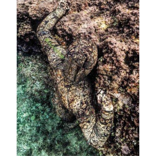 Salvimar Krypsis Spearfishing Camouflage Neoprene Wetsuit Diversworld Cairns Australia