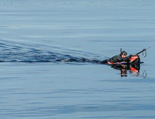 Spearfishing Safety 101